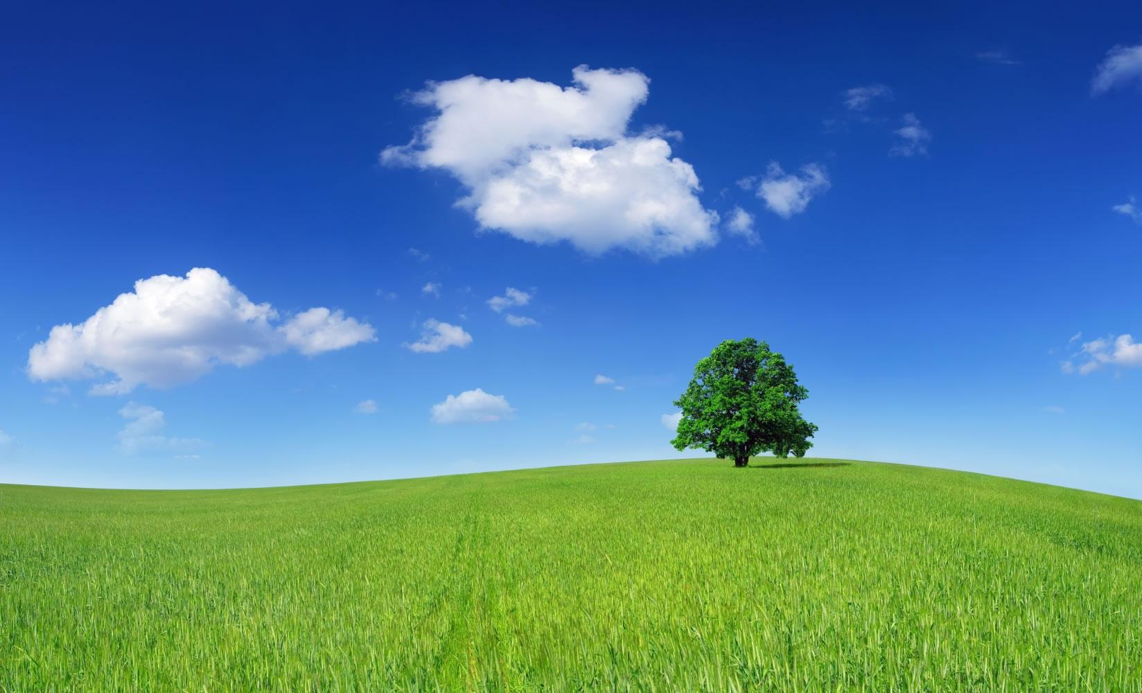 Fiche de vocabulaire environnement et cologie 3 lec s jours linguistiques - Couche d ozone en anglais ...